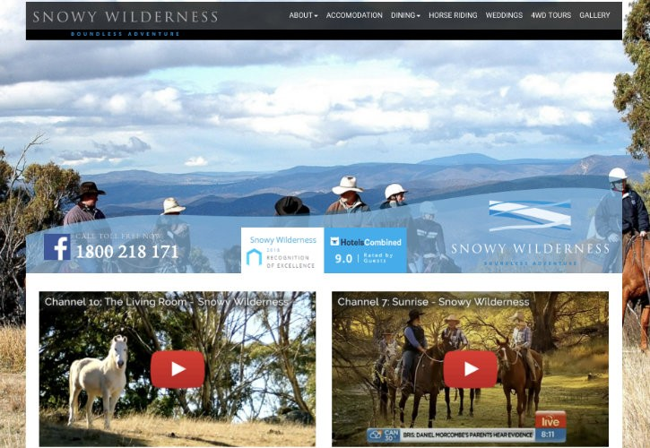 Snowy Wilderness website